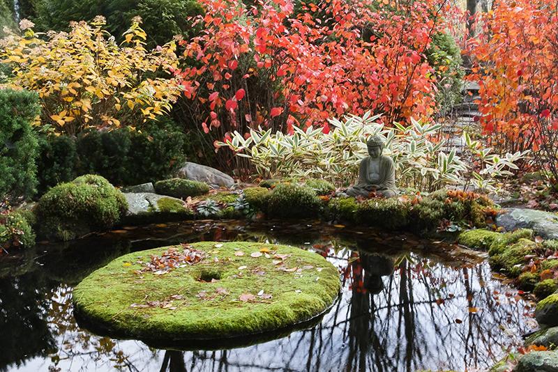 место для медитации в японском стиле ландшафтного дизайна
