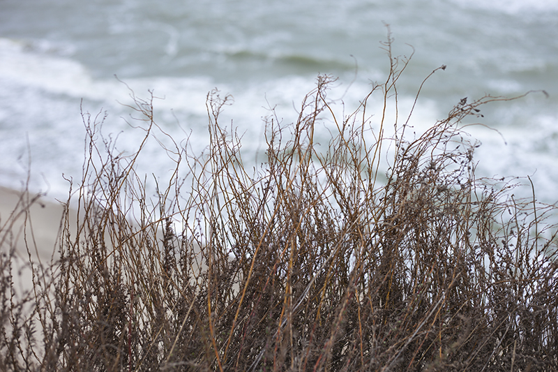 """Канадский дом из сип панелей - объект компании """"Украинский дом"""" в с. Курортное - всего в 100 метрах от дома пляж..."""